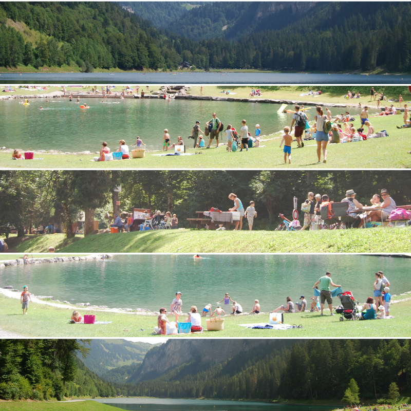 lake-collage-3
